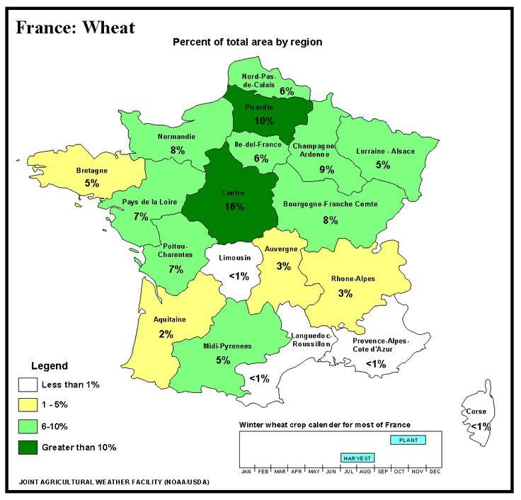 Frumento: il raccolto cala oltre le attese - Materie Prime - Commoditiestrading