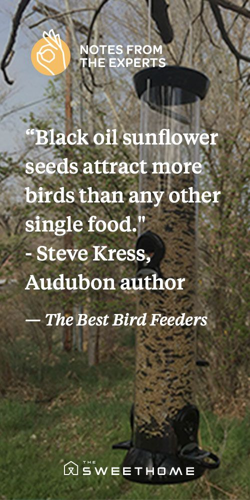 "The Best Bird Feeders | Sunflower seed tube feeders are very popular and usually come with 4-6 perches.  ""Black oil sunflower seeds attract more kinds of birds than any other single food,"" said Steve Kress, Vice President of Bird Conservation for the National Audubon Society and author of National Audubon Society North American Birdfeeder Guide."