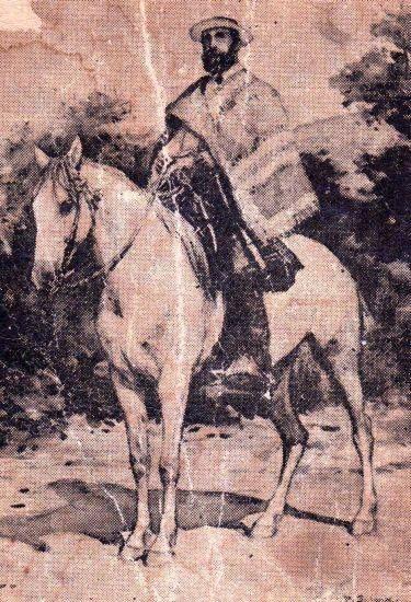 Chilean horse purebred- Caballo Chileno de pura raza record since 1893.