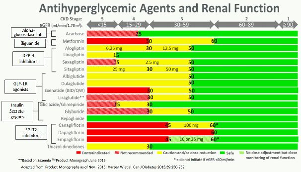 Prescribing Antihyperglycemic Agents by level of eGFR5