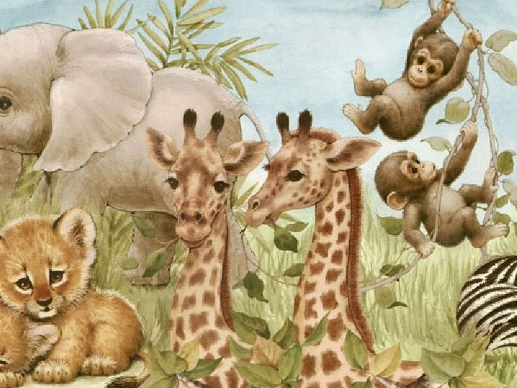 Penny Parker Images - baby elephants, lions, giraffes & monkeys