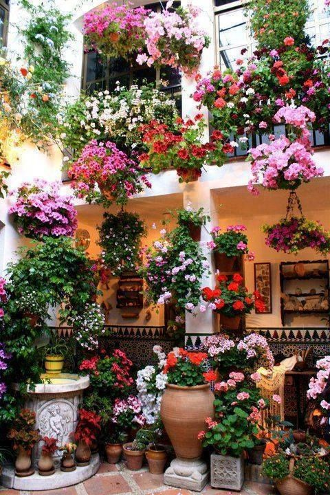 1000+ images about Patios Andaluces on Pinterest Festivals, Costa ...