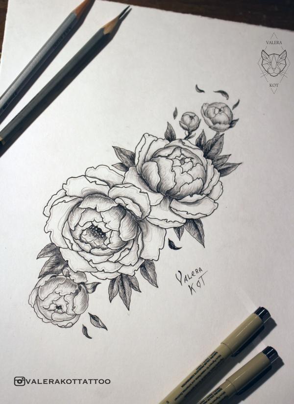 Розы геометрия