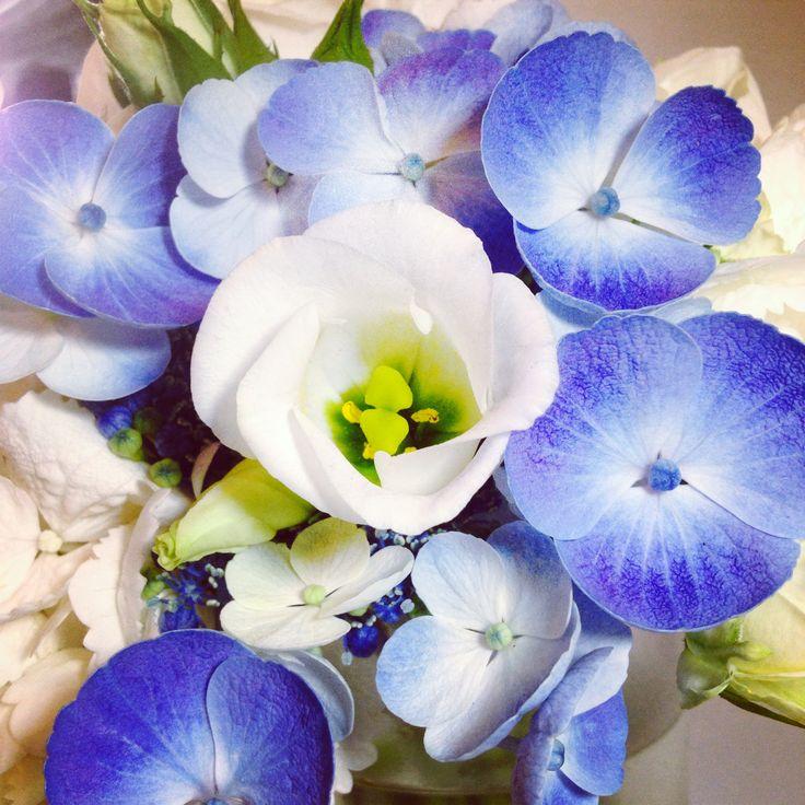 #flowers #beauty