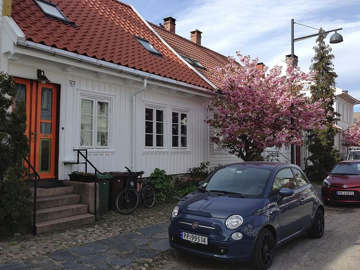 Cherry blossom in the old town Posebyen in Kristiansand, Southern Norway.  Photo: H. Sørvig©Visit Southern Norway