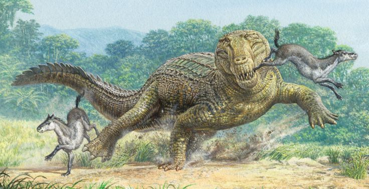 Explosive New Theory Explains Dinos' Demise   Extinct ... Extinct Species Dinosaurs
