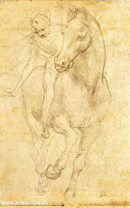 Study Leonardo Da Vinci