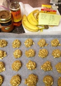 Peanut butter oat balls 2 bananas mashed 1/2 cup peanut butter 2 cups oats 1 tsp baking soda 1/4 tsp sea salt 1/2 cup honey 1 cup dried coconut or popped rice crisps Optional- chocolate chips, rais...