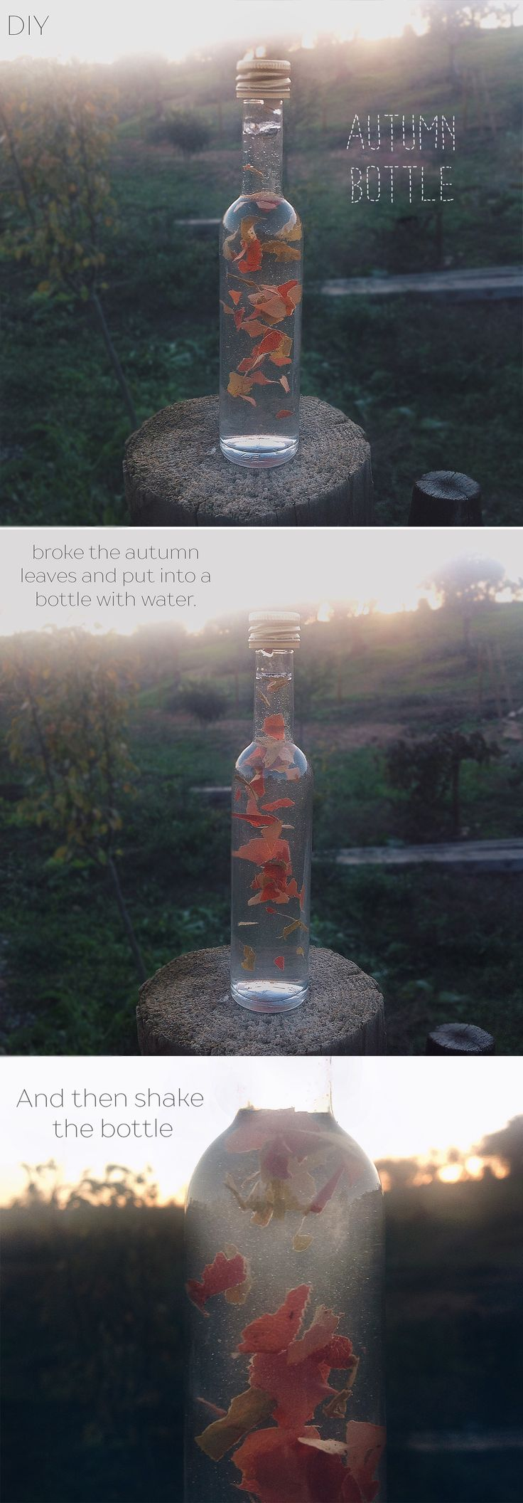 Catch autumn leaves, broke slowly and in the end put in a bottle of water, And Then shake the bottle. #decoration #diy #home