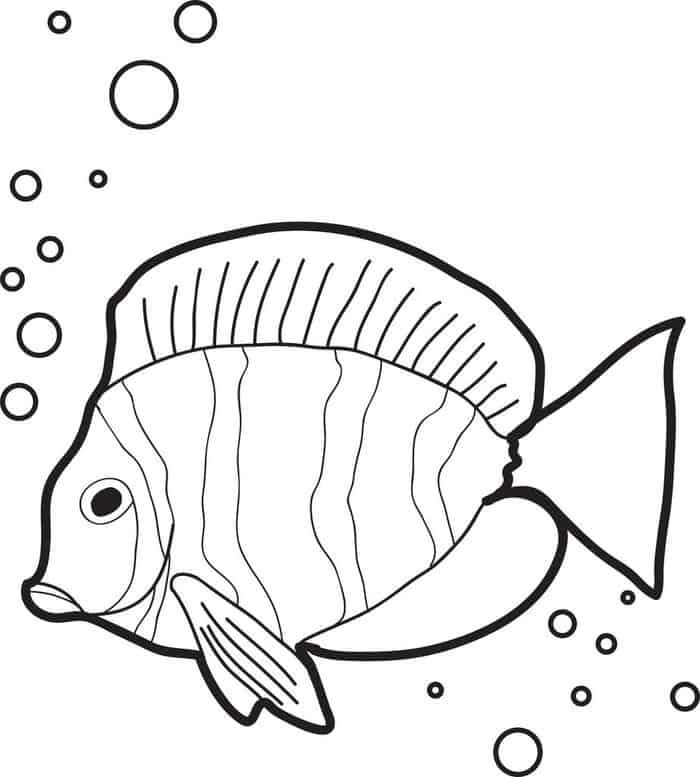 Fish Pictures To Color Up You'll Love