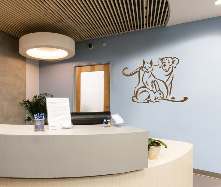 12+ Logan square animal hospital ideas in 2021