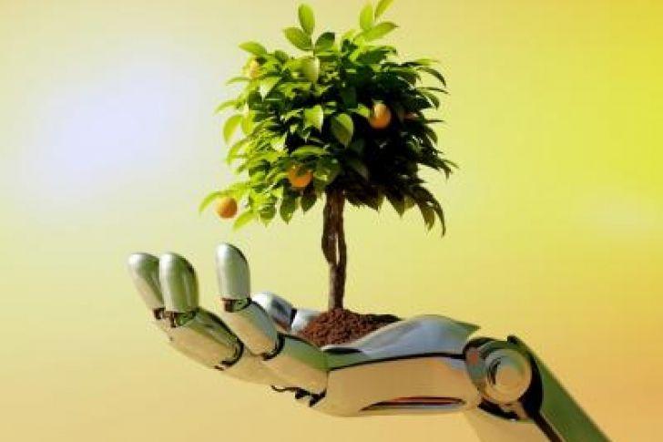 ¡Increíble! Crean un árbol artificial que genera electricidad