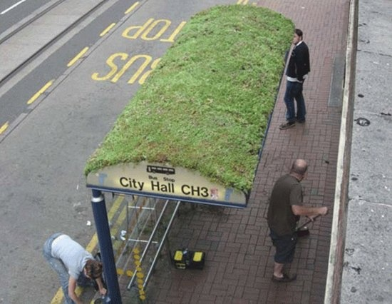 Bus shelters | greening billboards | cars covered in grass - there's a lot of good examples here, check the link for more info.