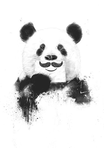 Superb Funny Panda Art Print By Balazs Solti