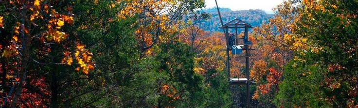 Zip Lining-I would be scared to do this but it would be awesome!