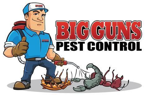 Best pest control services in Delhi