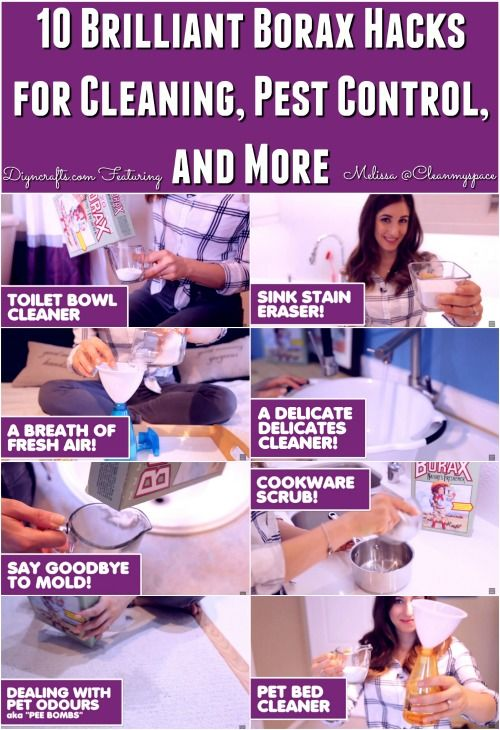 10 Brilliant Borax Hacks for Cleaning, Pest Control, and More {Video}