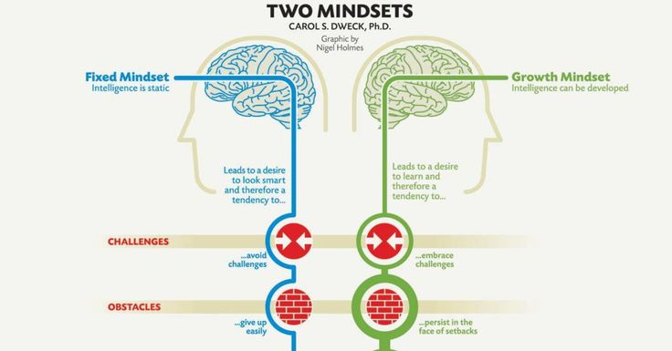 """Why working hard matters! Neurobiology has proven the brain's elasticity, which aligns well with this """"growth mindset."""" The Brains of Successful vs. Unsuccessful People Actually Look Very Different"""