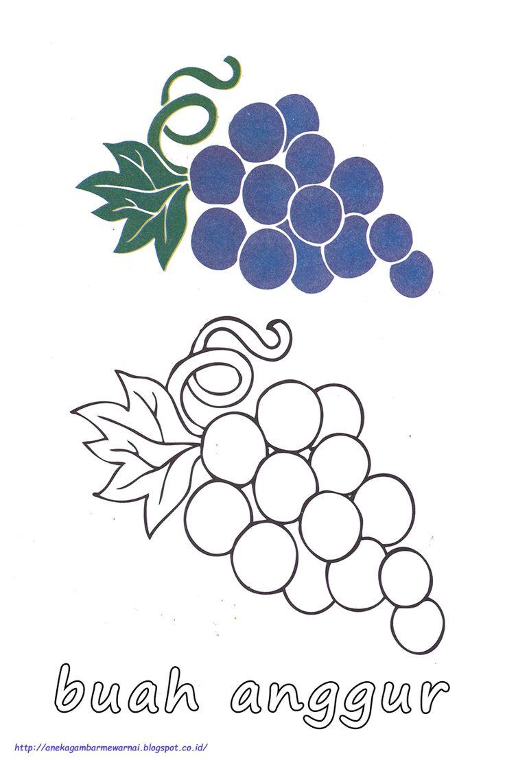 gambar mewarnai buah anggur buku mewarnai buah anggur