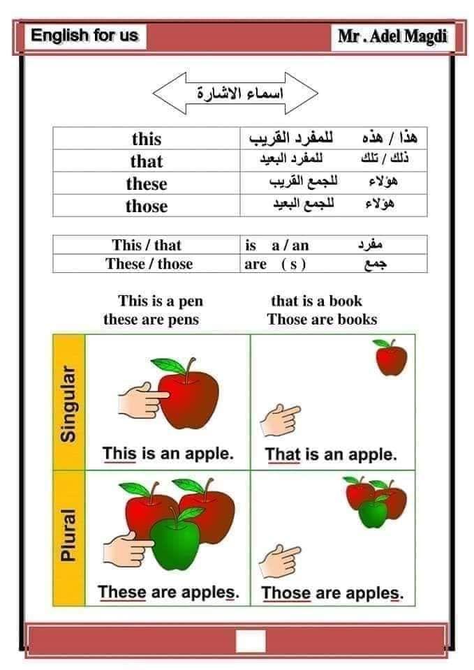 اساسيات اللغة الانجليزية سنة اولى متوسط Ency Education الموقع الاول للدراسة في الجزائر Education