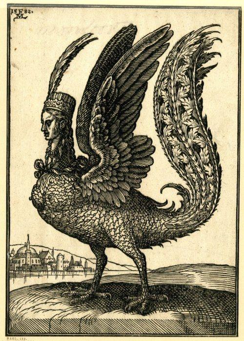 "Melchior Lorck ""A harpy"", c.1582"