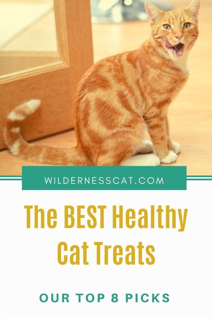 8 Best Healthy Cat Treats Our Favorite Cat Treats Of 2020 In 2020 Healthy Cat Treats Cat Nutrition Best Cat Food