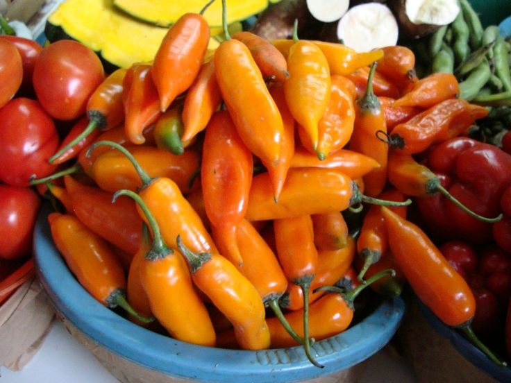 M s de 25 ideas incre bles sobre platos peruanos en - Romper un plato trae mala suerte ...