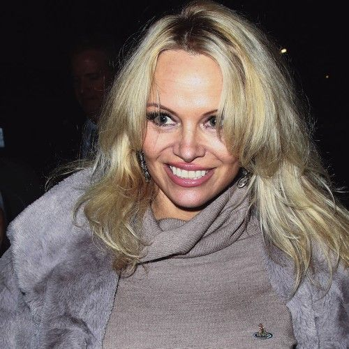Newsdesk   Pamela Anderson wants to help young fans embrace the skin they're in by writing a new self-help guide.   The Baywatch actress and model, 50, admits she is concerned about how much youths rely on social media 'likes' for validation, and while she used to think sites...