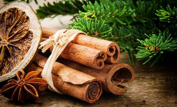 Decorazioni per l'albero di Natale fai da te: 6 idee uniche e naturali! | Giardinieri in affitto