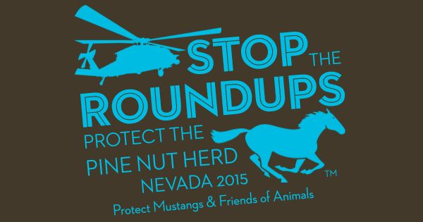 We just finished making T-Shirts to raise awareness to STOP the ROUNDUP and PROTECT the Pine Nut Herd! Go here to get your T-Shirts right now: https://www.booster.com/protectpinenutwildhorses  According to the lawsuit, BLM allegedly gagged public comments by using an outdated Environmental Assessment from 2010 for a 2015 roundup. This is a HUGE issue. The public must be allowed to comment and participate on environmental matters according to the National Environmental Policy Act (NEPA). ...