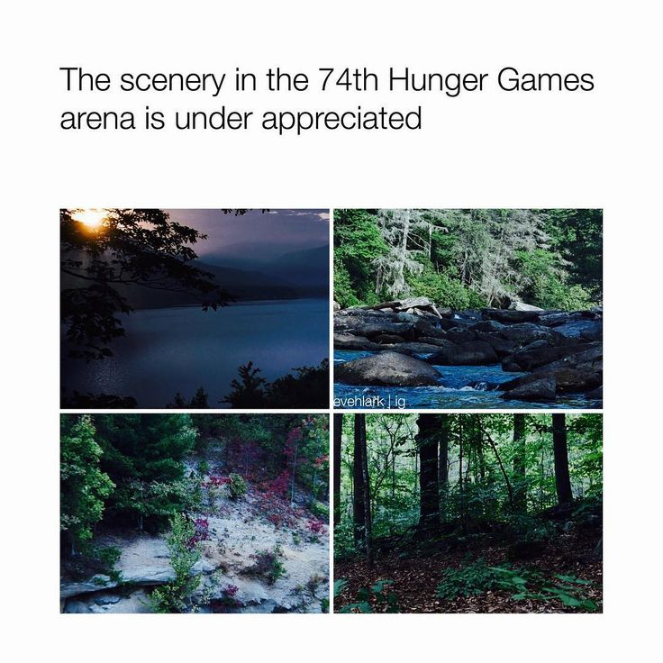 "157 Likes, 4 Comments - ⠀⠀⠀⠀⠀⠀⠀⠀⠀⠀-the hunger games  (@evehlark) on Instagram: ""fc; 10.6k —— Oh wow so I haven't posted on here in 5 days yikes!! Sorry I've been so inactive I've…"""