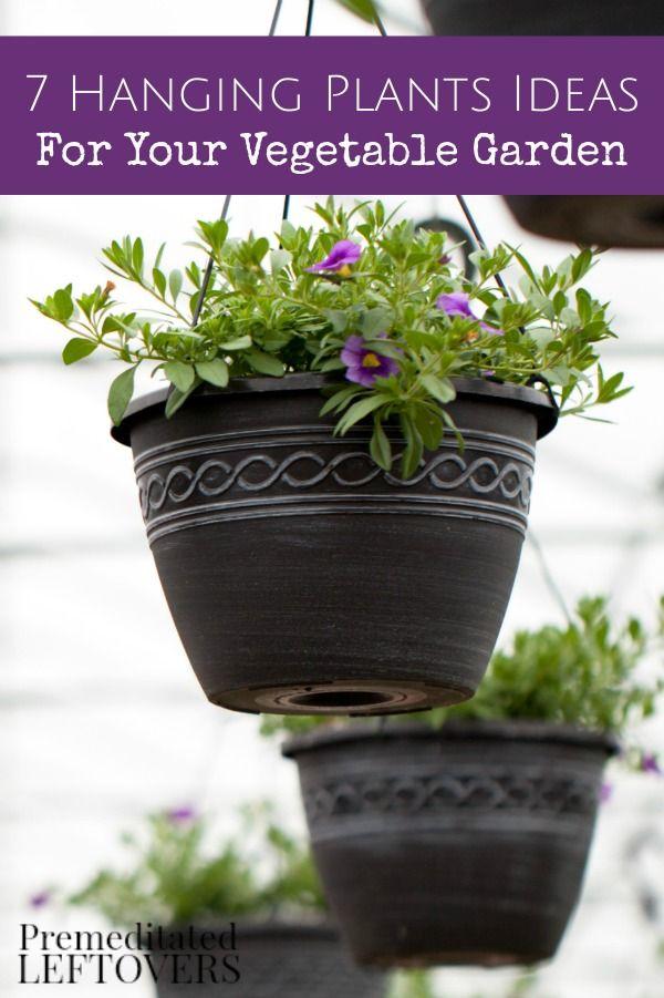 204 best mon Sense Gardening images on Pinterest