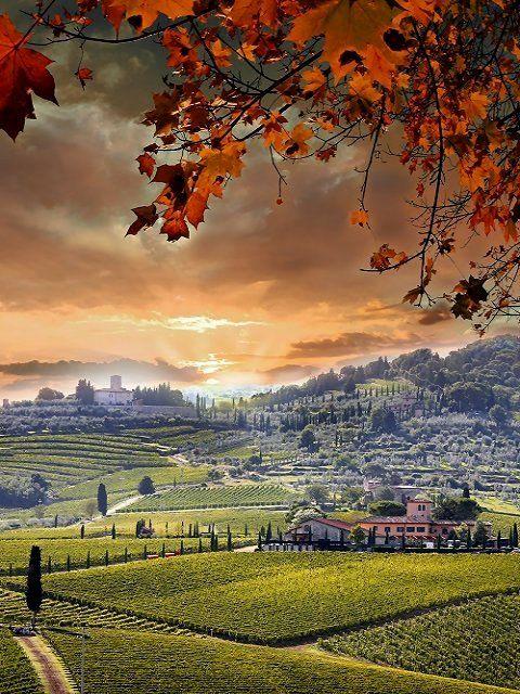 Autumn in Italy: The Chianti region, Tuscany, Italy
