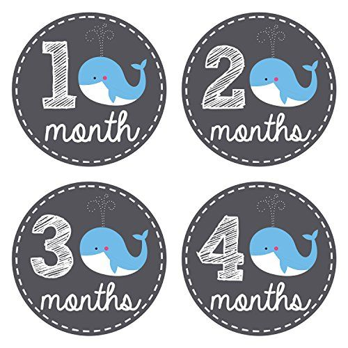 Pinkie Penguin Baby Monthly Stickers - Whale Theme - Baby Boy - 1-12 Months - Milestone Onesie Stickers - Month Stickers for Baby Pinkie Penguin http://www.amazon.com/dp/B00XIICL76/ref=cm_sw_r_pi_dp_yAV1wb1MRDY0K