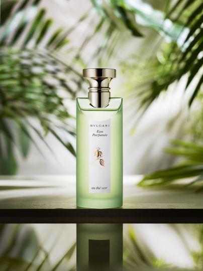 Still life photographer Candice Milon - Bvlgari Eau parfumée à la fleur de Thé Vert #perfume #plant