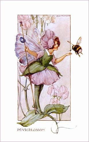 Peaseblossom Fairy
