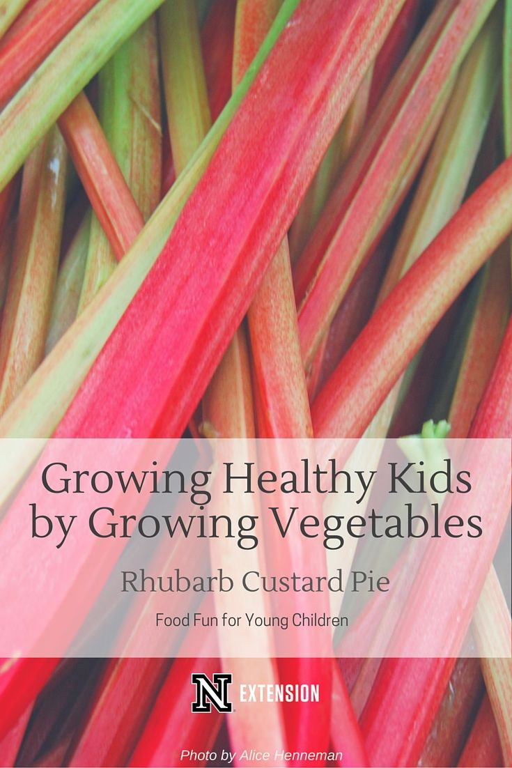 Wish your child would eat more vegetables? Wish you would eat more vegetables? Children that grow vegetables eat more vegetables than those who don't. An easy vegetable to grow is rhubarb. Check out this newsletter for an easy recipe for Rhubarb Custard Pie!