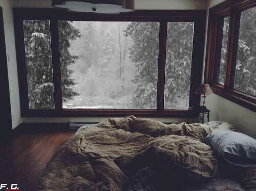 window, cute couples, room, nature, warm, cute, winter, bed, light, autumn, bedroom, perfec, couples, trees, snow, white, First Set on Favim.com