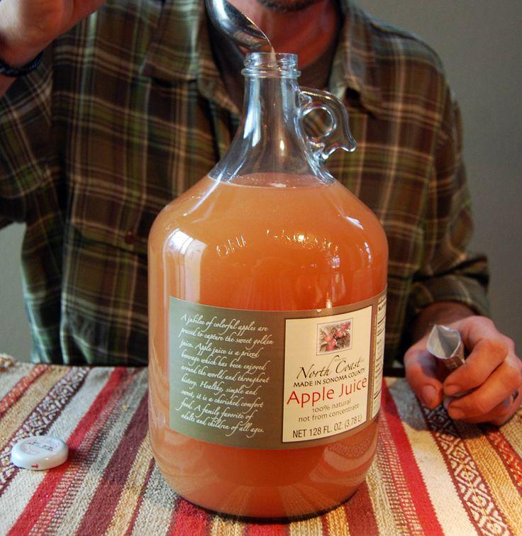 Make cider at home - Mr. Money Mustache @mrmoneymustache