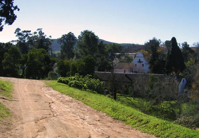 Groote Post Wine Estate.