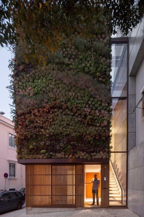 cabbagerose:    house in lisbon, portugal  via: stefanoandrighetto