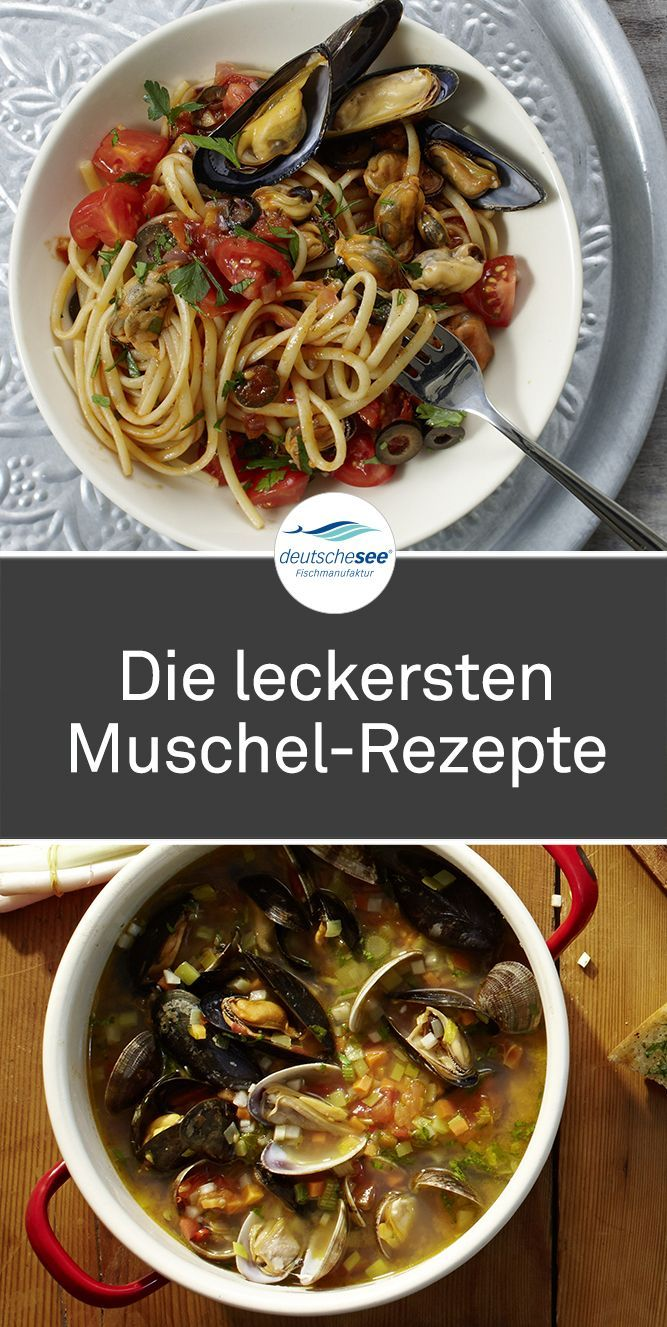 Photo of Discover the tastiest mussel recipes for mussels, clams and more.