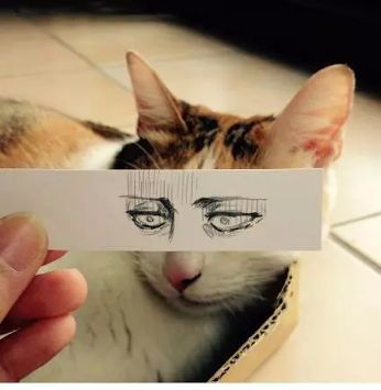 Le Cat<<<WAIT JUST A DIDDLY DARN SECOND THERE CHUMMY CHUM CHUM CHUM , THOSE EYES LOOK A LOT LIKE LEVI'S.