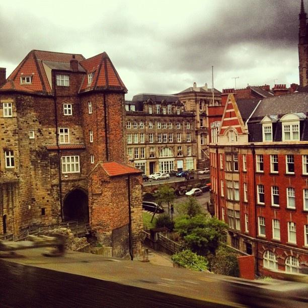Newcastle. Beautiful.