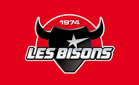 Bisons de Neuilly-sur-Marne, FFHG Division 1, Neuilly-sur-Marne, Paris, France