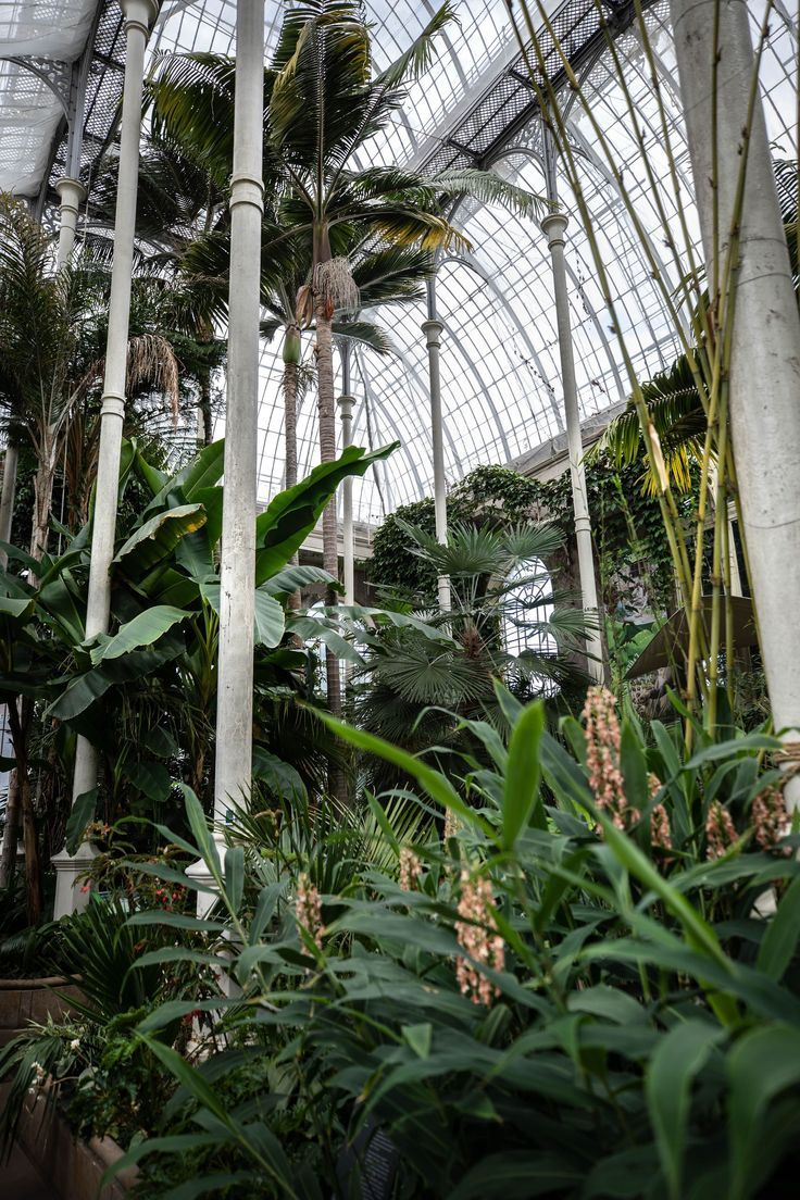 7876f6ebf03d989e685e2334260c264e - Places To Eat Near Botanic Gardens Edinburgh