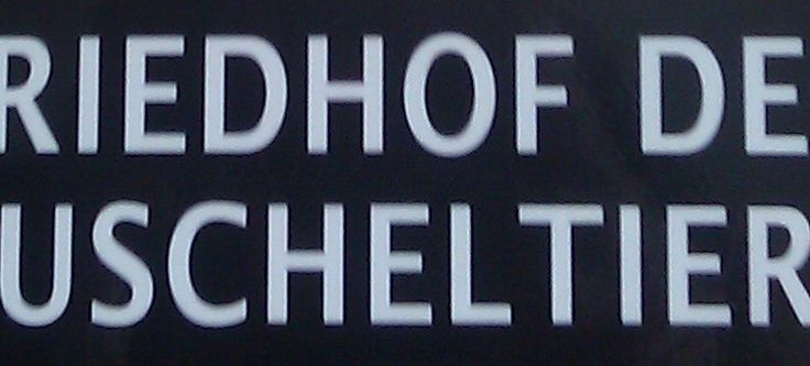 friedhof-der-kuscheltiere