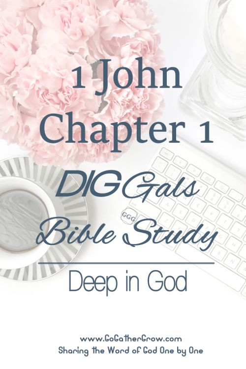First instalment of a Bible Study | DIG (deep in God) 1 John, Chapter 1