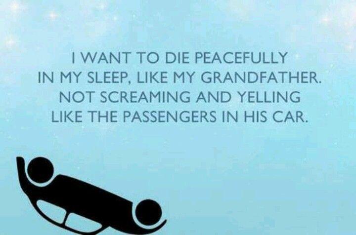 Driving humor. [Hilarious]