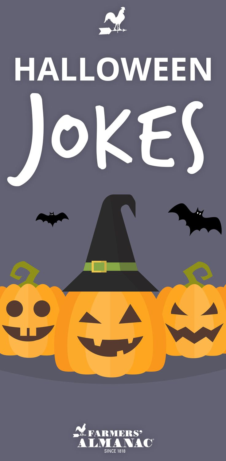 Image of: Riddles Badumchhh Enjoy These Very Pinterest Halloween Jokes Groans And Puns Clever Halloween Ideas